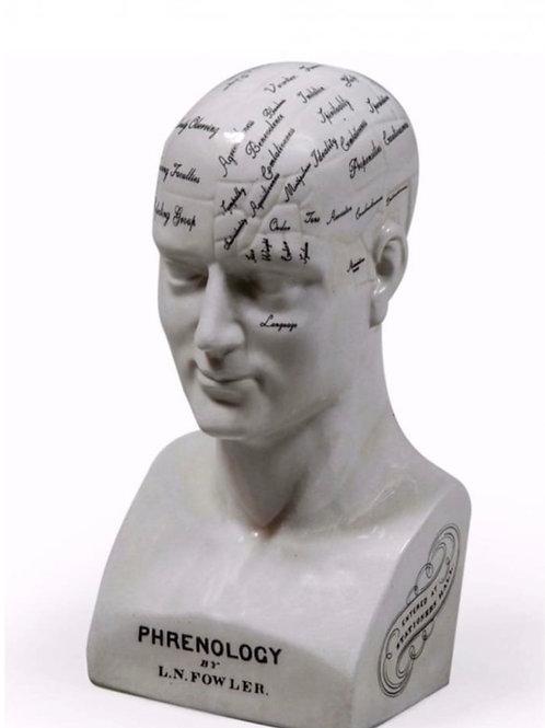 LARGE ANTIQUED CERAMIC PHRENOLOGY HEAD