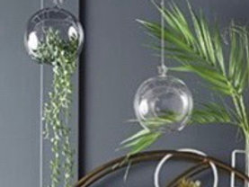 BOTANIST HANGING SPHERE -CLEAR GLASS