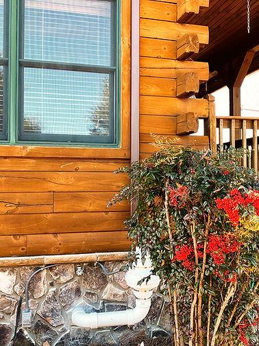 wooden-house-berry-bush_edited.jpg