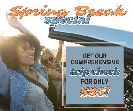 Trip Check Special (4)-page-001.jpg