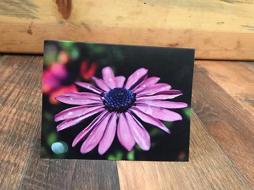 Purple Flower- set of 5