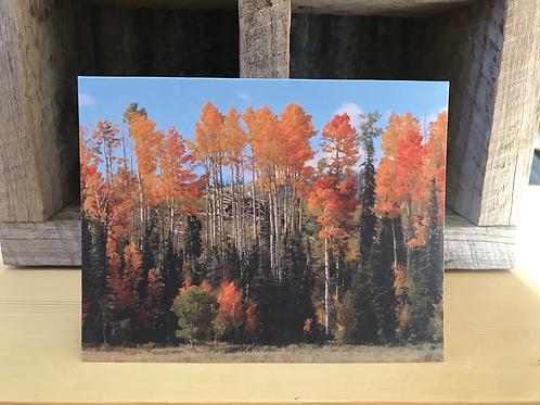 Fall trees- set of 5