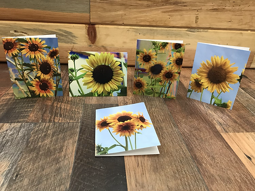 Sunflower cards- set of 5