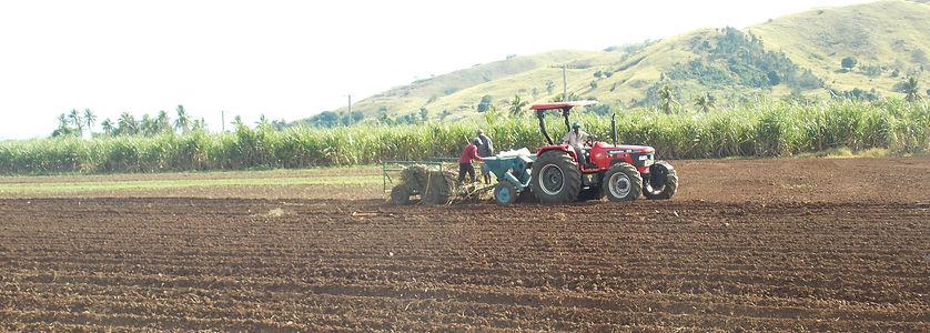 farmersmain.JPG