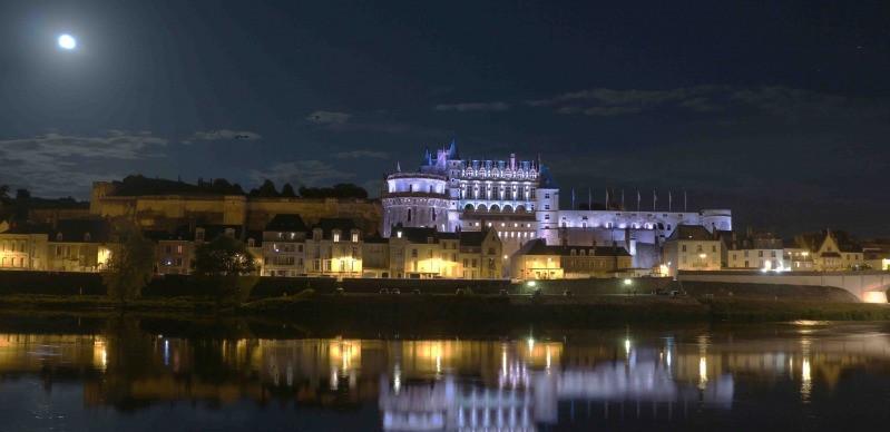 Château Royal d'Amboise. http://www.chateau-amboise.com