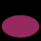 Cub 12in Logo.png