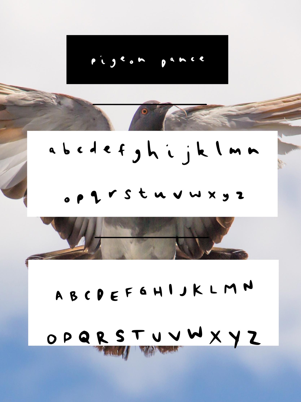 Pigeon Dance