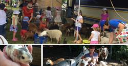 Viv's Farm Animals