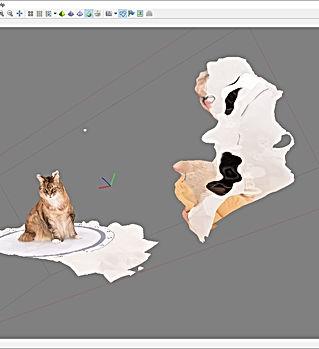 Exemple de chat en cours de modélisation 3D