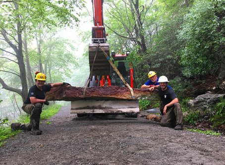 Lenape Steps Underway