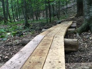 In The Bog...Building Boardwalk