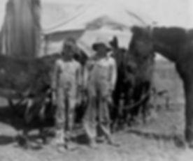 mule1917s.jpg
