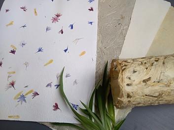 Papier végétaux et inclusion pétales de fleurs