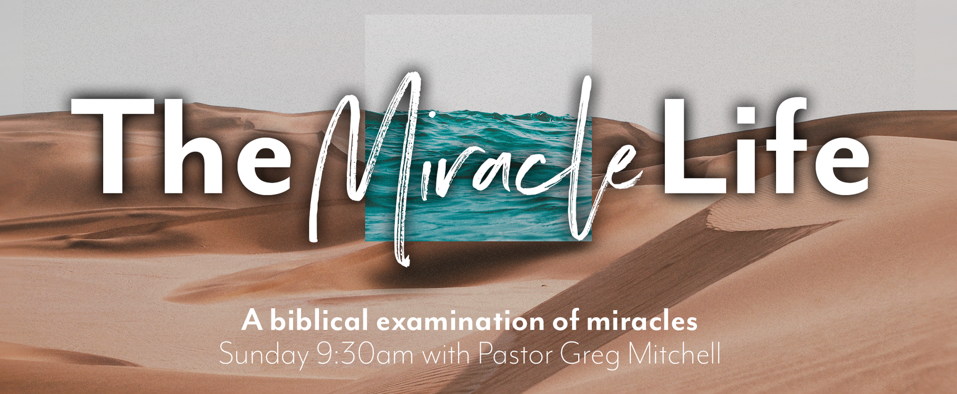 The Miracle Life Web