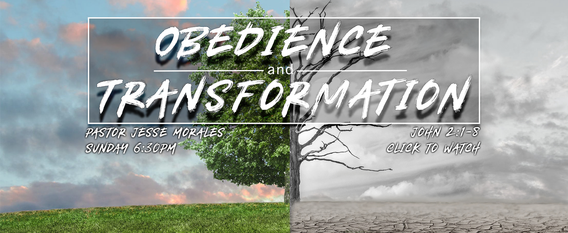 OBEDIENCE AND TRANSFORMATION WEB.png