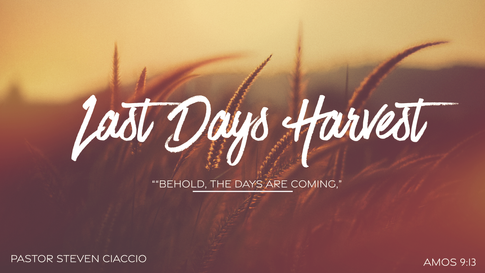 Last Days Harvest Main.png