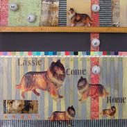 Lassie Come Home by Annette Coleman