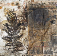 The Fern, The FT, and The Crisis (stage 1 of 2) by Taha Afshar