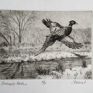 Riverside Rooster