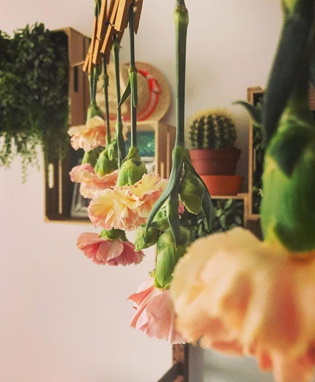 Me encantan las flores y las infinitas posibilidades que tienen! Éstas ahora adornan mi pisito😊 Fel
