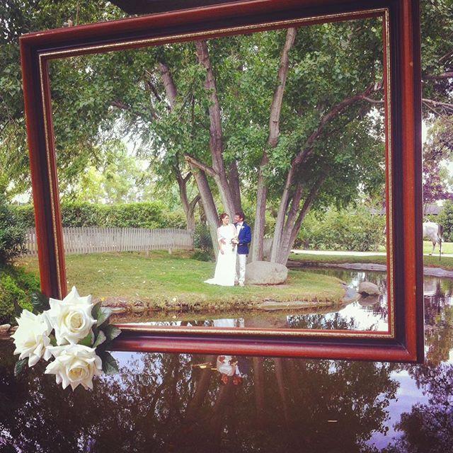 Bonita foto para unos novios muy🔝🔝!! #eventos #novios #noviosviajeros #top #travel #boda #love #pi