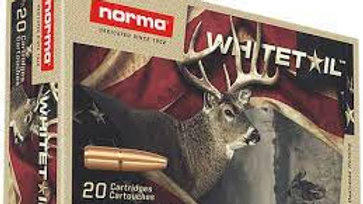 Norma 243 win 100gr 20rds