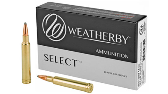 300 weatherby mag 165 grain 20 rounds