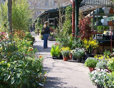 Medieval Paris, Visit the Hidden Paris