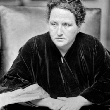 Gertrude Stein, Visit the Hidden Paris