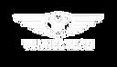 tunnel tech logo_white.png