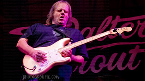 WALTER TROUT INTERVIEW