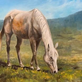 horse painting.jpg