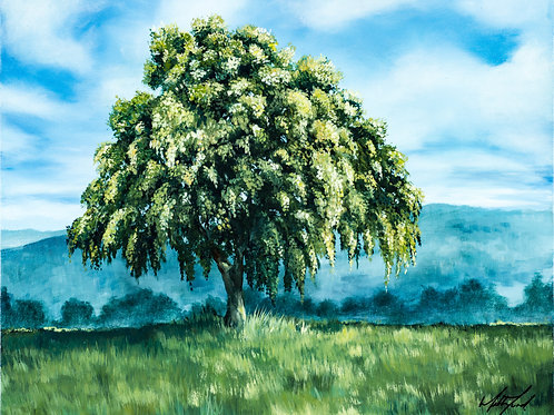 Original - Green Tree Study 1