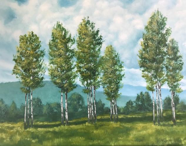 poplars in meadow