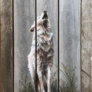 Barnwood wolf.jpg