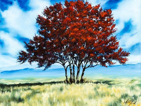 Original - Red Tree Study 1