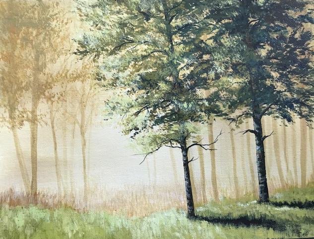 misty forest green tree