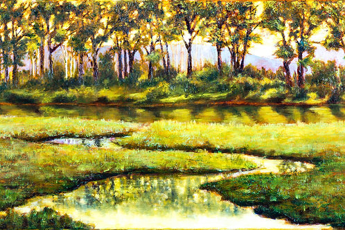 Original - Midsummer Reflections