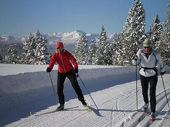 skate ski example.jpg