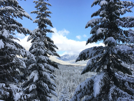 Winter on Snoqulamie Pass