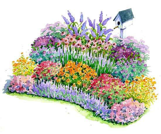 bhg bird and butterfly garden.jpg