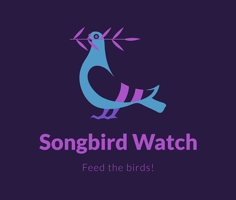 29/11/20 – Songbird Watch