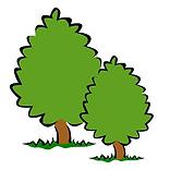 bush-148265_1280.png