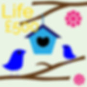Life Membership birds house.jpg