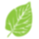 leaf-2135345_1280.png
