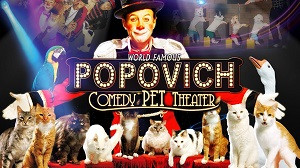 Popovich300.jpg