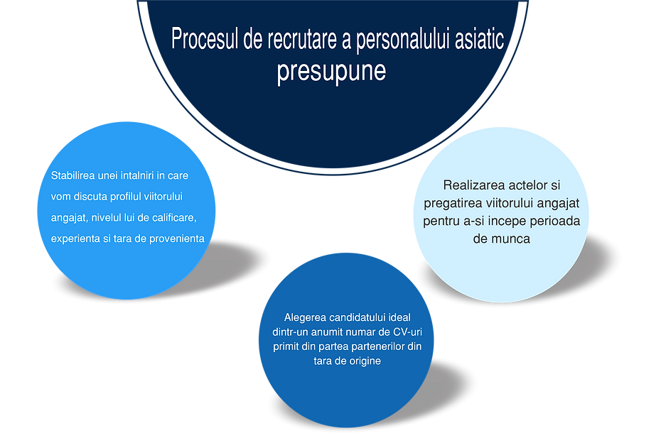 procese recrutare 2.png