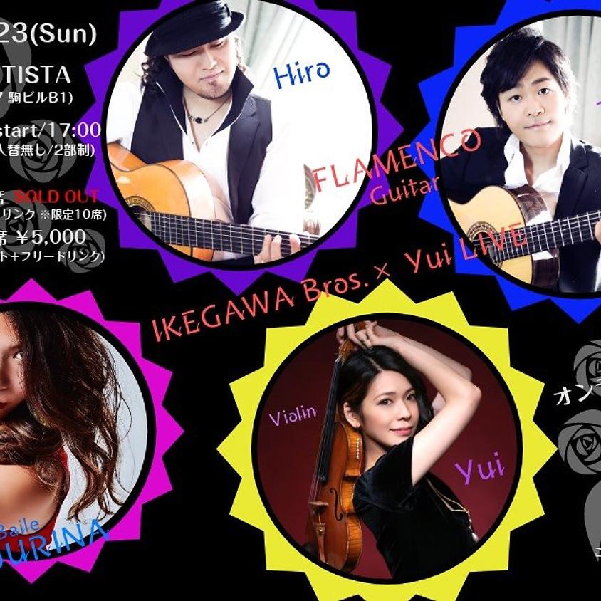 IKEGAWA Bros ×Yui LIVE