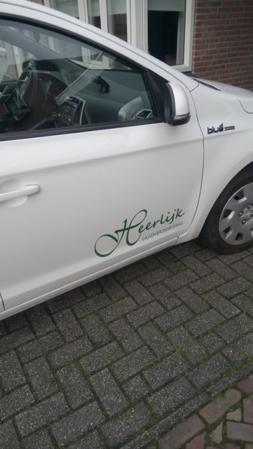 auto logo-2