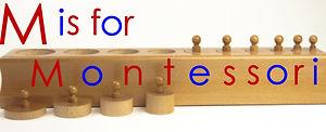 Montessori Cylinder Block as used at Bright Sparks Montessori School